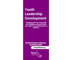 Image of youth leadership and development brochure